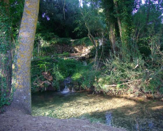 Cañón del Rio Izana